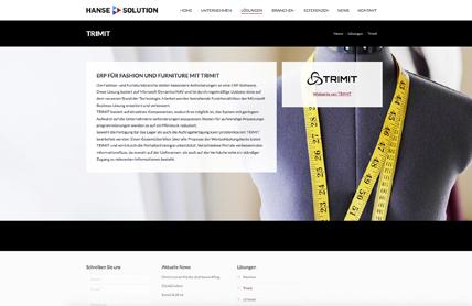 Webdesign für Hanse Solution