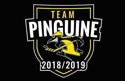 """Wir spielen mit im """"Team Pinguine""""!"""